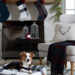 joanna-gaines-pet-christmas-collection_target