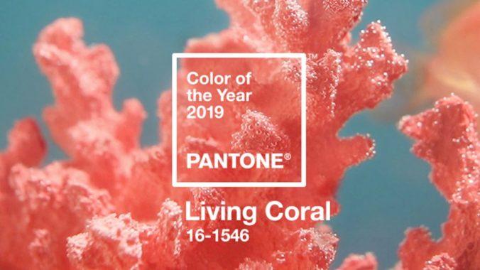 pantone-living-coral-pantone-2019-en-proyectos