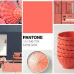 Pantone-Living-Coral-2019-Polanco-Decora