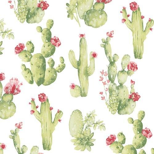 Diseño Nopales mexicano papel tapiz