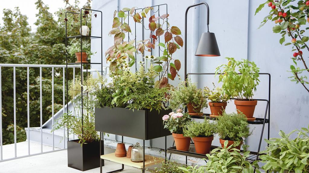 behance muebles para plantas