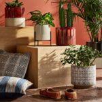productos artesanales ambientes mexicanos
