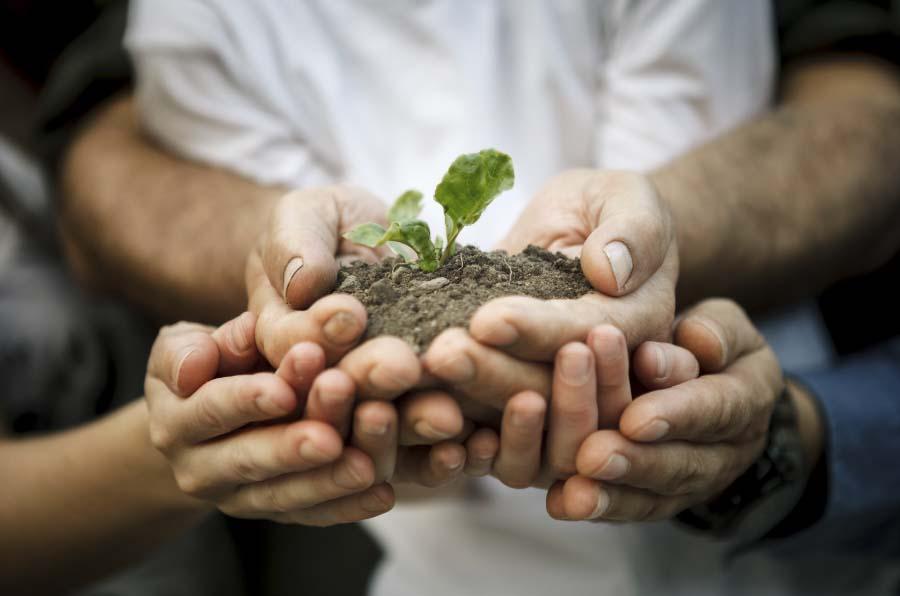 colaboracion-sostenibilidad para beneficio de arquitectos